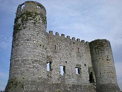 Carlow_Castle